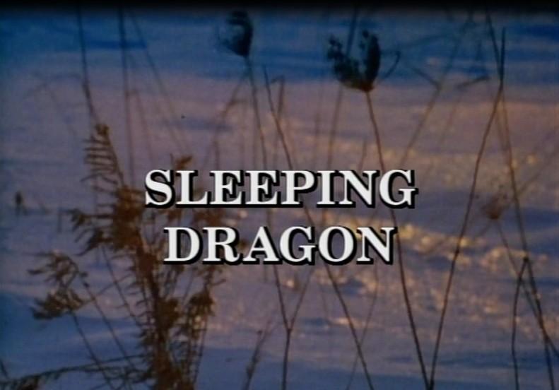 sleeping dragon 1